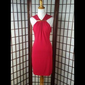 Stunning Red CALVIN KLEIN Lined SHEATH DRESS